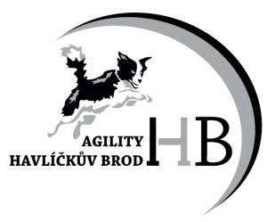 logo_agility